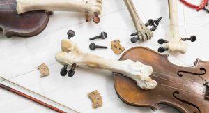 Josephine Riemann: Totentänze (2020) Violinen, Knochen (Mensch, Reh, Rind, Schwein)